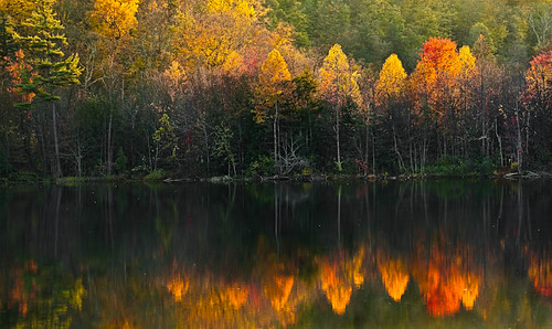 autumn trees newyork backlight reflections fallfoliage greenlake backlit nikkor70300 davidjenkins nikond90 greenlakestatepark