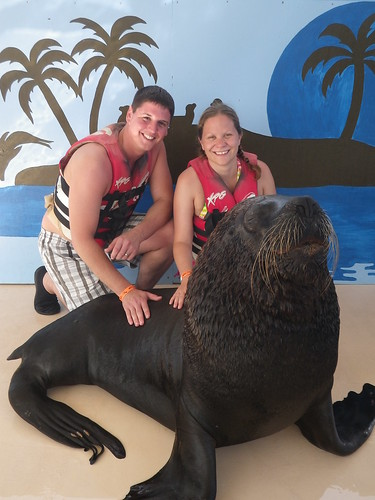 Franco the sea lion is getting his mane