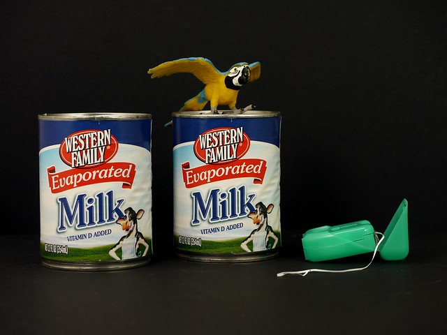Evaporated Milk x 2, Toy Macaw and Dental Floss