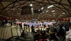 large scale   8 ring karate tournament