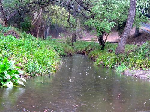 rainy creek