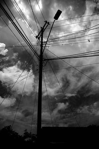 holiday blackwhite spring flickr day telegraphpole tobago 2012 castara