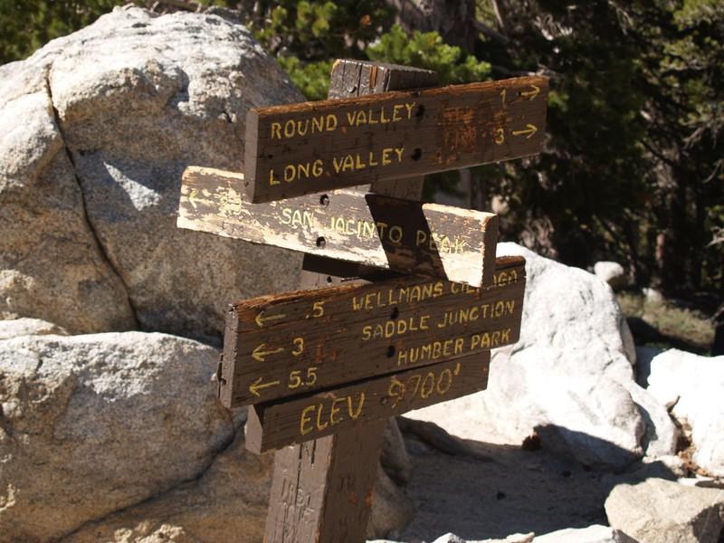 Wellman Divide Trail Junction Sign