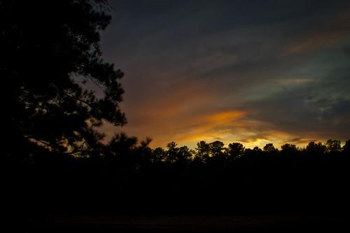 trees sunset sky nature silhouette clouds georgia lagrange troupcounty westpointlake thesussman sonyalphadslra550 project36612011