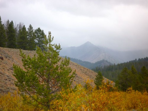 autumn idaho stanley evergreens galena bouldermountains sawtoothcity smileycreek