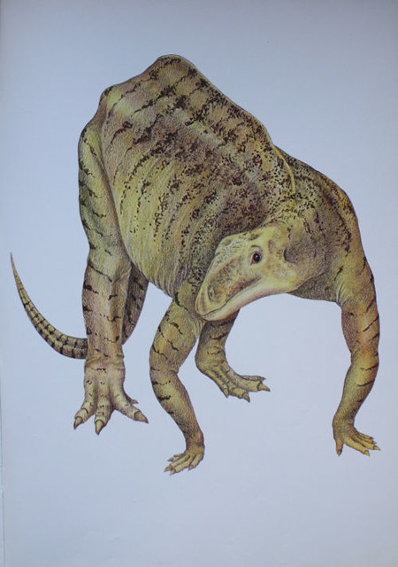 RIO_1974_Camptosaurus