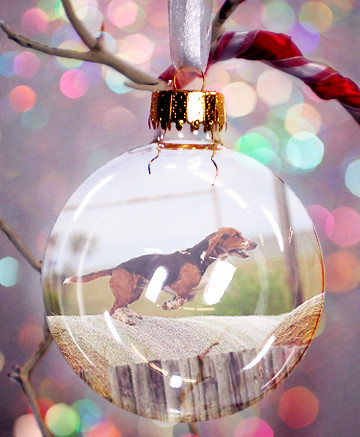 Bokeh Charlie Ornament