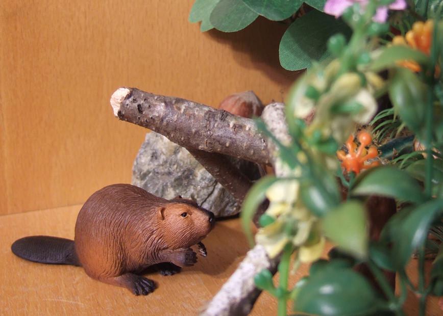Mojo beaver: the best beaver figurine at the market? 6364960211_45a4e145f3_b