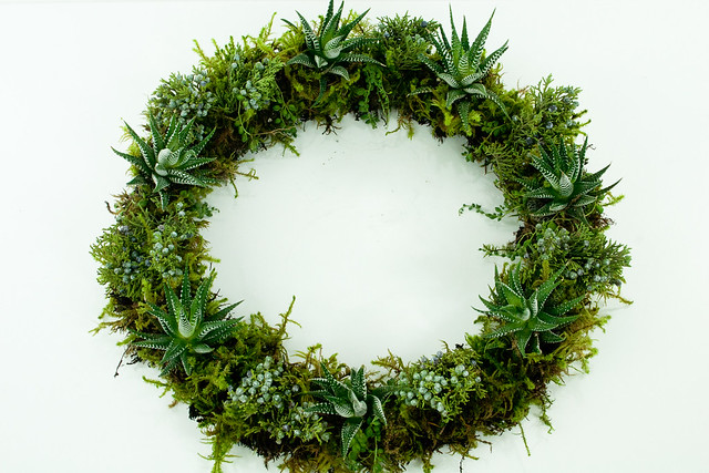 Succulent and Juniper Wreath
