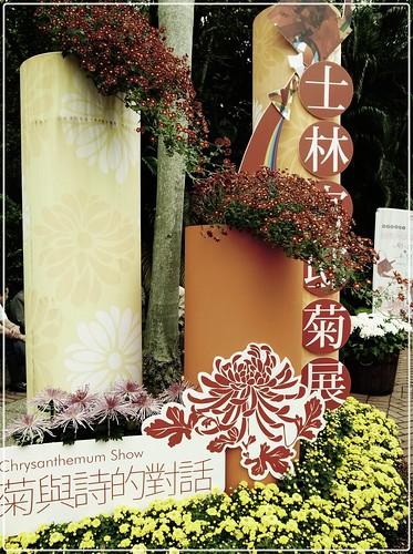 2011 士林官邸菊展