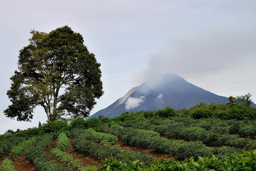 Berastagi - Sinabung Volcano