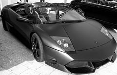lamborghini aventador(0.0), automobile(1.0), lamborghini(1.0), wheel(1.0), vehicle(1.0), performance car(1.0), automotive design(1.0), lamborghini(1.0), lamborghini reventã³n(1.0), land vehicle(1.0), luxury vehicle(1.0), lamborghini murciã©lago(1.0), sports car(1.0),