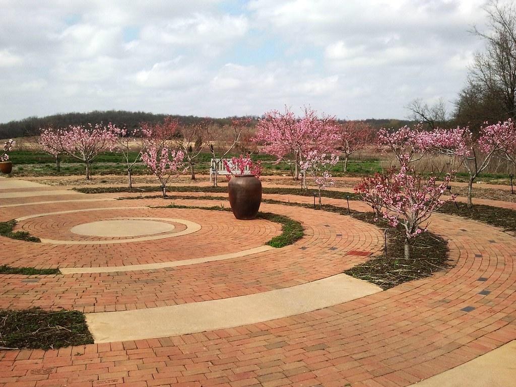 A Peachy Keen Landscape | Powell Gardens, Kansas City\'s botanical garden