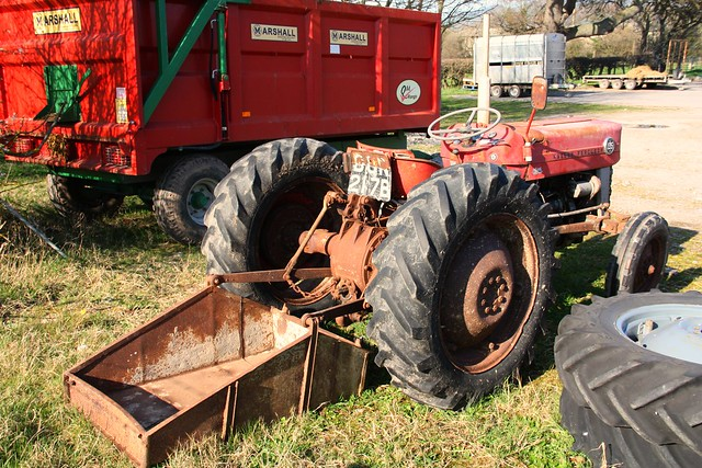 1964 Massey Ferguson 135 : Massey ferguson tractor bun b flickr