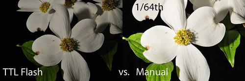 Day 85 - TTL vs. Manual Flash