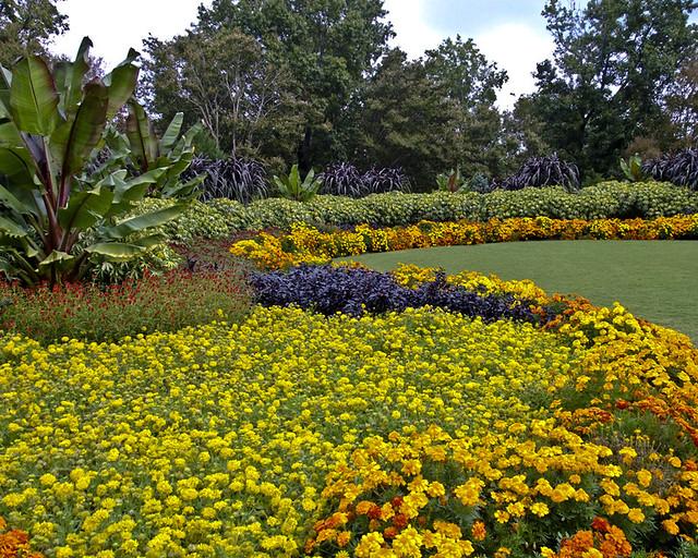 Welcome to the Garden Blog