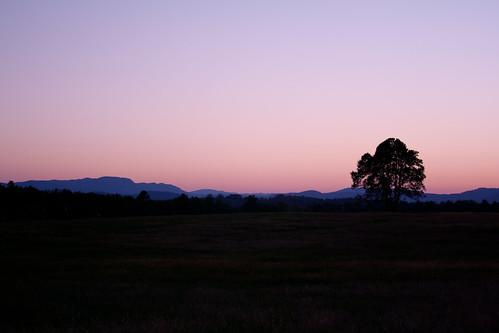 nature landscapes westernnorthcarolina loisannphotography