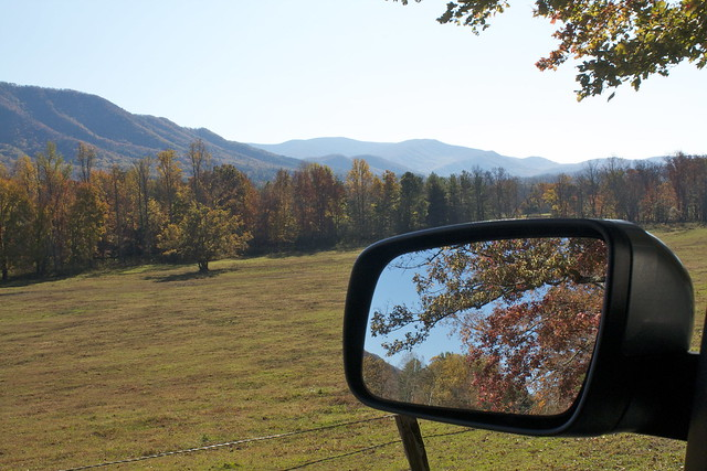 Side Mirror Reflections