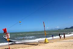 Palm Cove_8