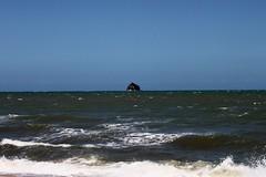 Palm Cove_10