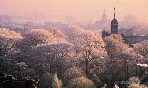 Winter Morning Glow in Antwerp - 1992