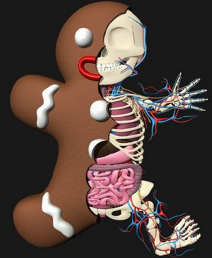 480x400_dissected-gingerbread-man-by-jason-freeny