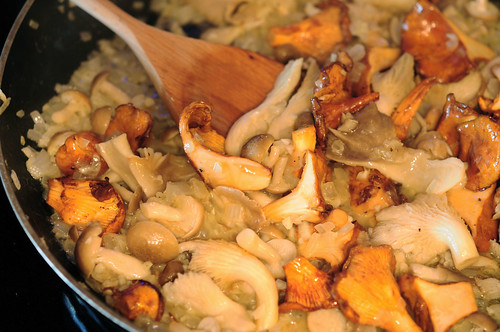 stewed mushrooms