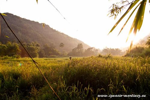 asia southeastasia laos nam tha luangnamtha sudesteasiatico louangnamtha laosluang namthaluang