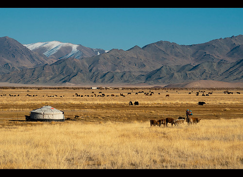 ranch travel west nature asian asia cattle mongolia destination oriental orient range kazakh grasslands steppe mongolian altai bayanulgii worldlocations bayanolgii bayanölgii