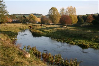The River Darent near Eynsford, Kent