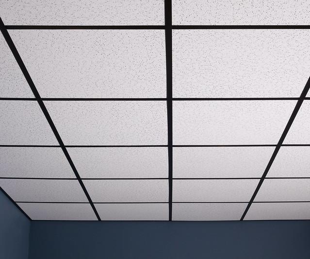 Pro ceiling tiles