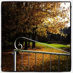 Portail ouvert sur l'automne