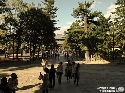 2011Kyoto_Japan_ChapFourteen_13