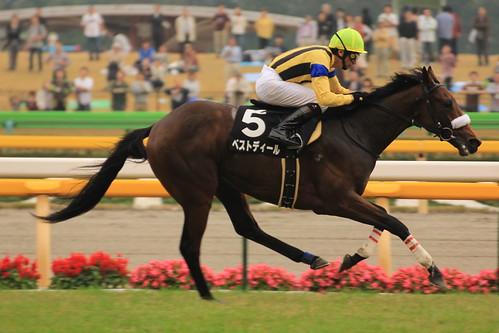 9R勝ち馬 ベストディール(蛯名正義)3