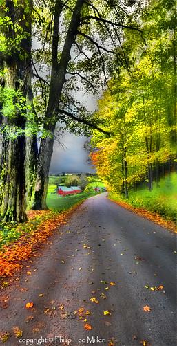 leaves vanishingpoint vermont fallfoliage fields hdr topaz mapletrees countryroads jennefarm vertorama famousredbarns flickrstruereflection1 flickrstruereflection2 flickrstruereflection3 flickrstruereflection4
