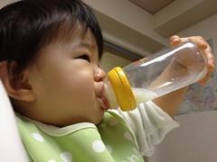 今日の片手哺乳瓶飲みとらちゃん(2011/11/21)