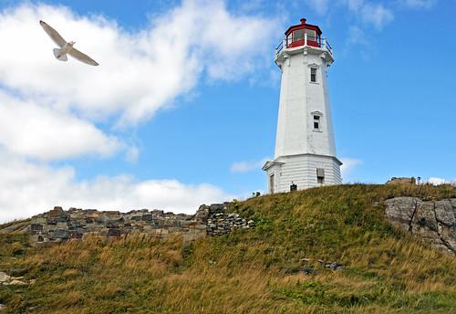 無料写真素材, 建築物・町並み, 灯台・ライトハウス, 鴎・カモメ, 風景  カナダ