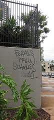 Ferals Krew Schoolies 200011