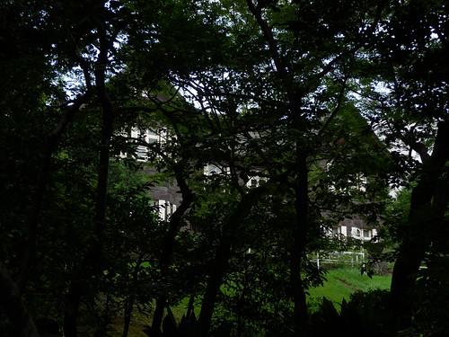 Tokyo - rest-139.jpg