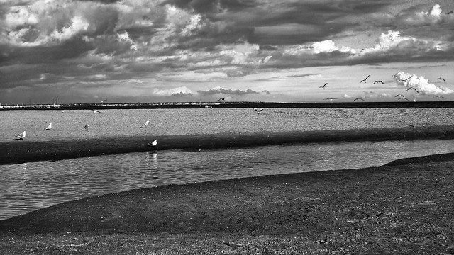 Port Melbourne BW