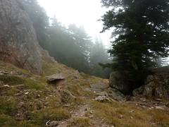 Bocca di Fumicosa Sud : départ de la trace vers Bocca Cilindinu/Punta Samulaghja