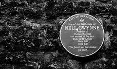 Nell Gwynne Mistress of Charles II birthplace Hereford UK #dailyshoot #365
