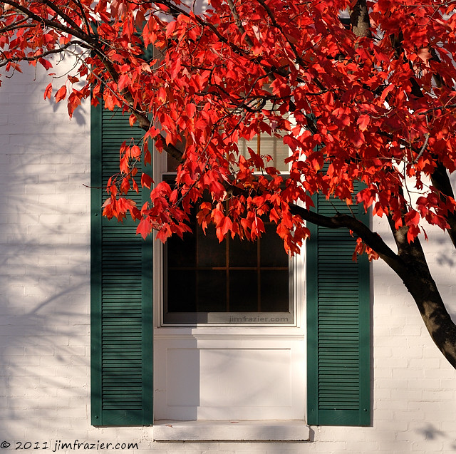 White Building, Green Shutters, Red Leaves