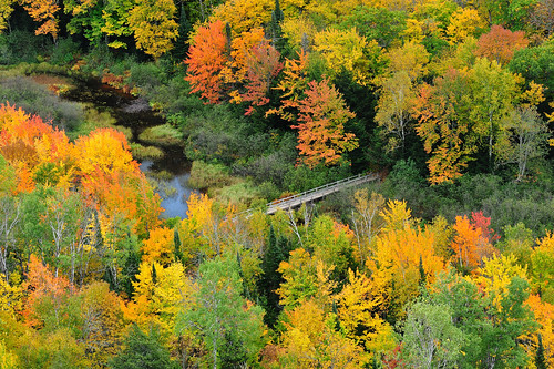 Footbridge -  Autumn at Lake of the Clouds , Porcupine Mountains State Park