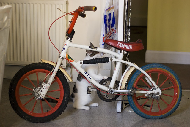 Yamaha BYZ