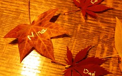 Leaf Place Cards for Thanksgiving