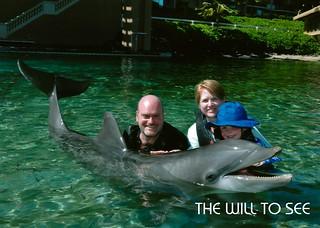 dolphin - jjs