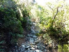 Sur le sentier vers Bocca d'Alzeta Longa : les empierrements