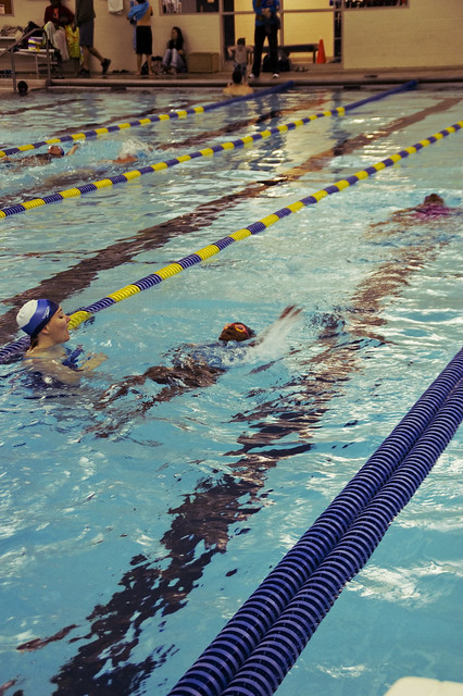 30 Days of Gratitude - Day 5:  Swimmers
