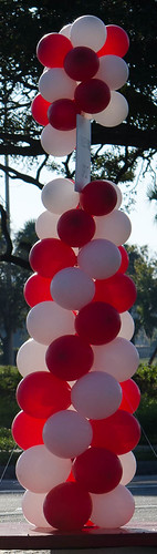 Ballons mark the way for #TBHeartWalk walk